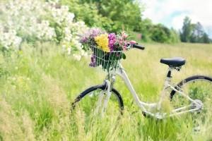 Da Fano a Pesaro in bicicletta